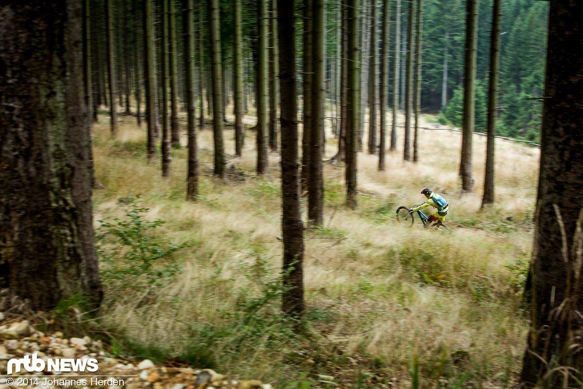 Manual mitten im Wald auf der Libverdska strana