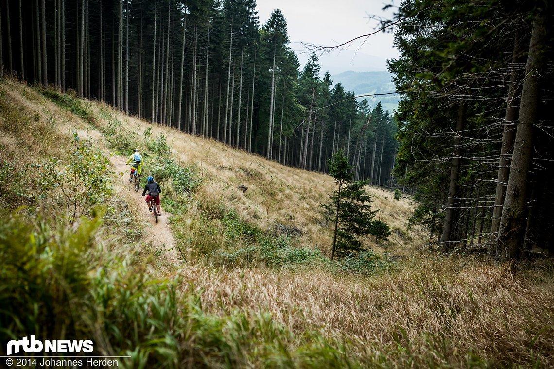 Die Trails sind so angelegt, dass man die kleinen Anstiege fast immer mit dem Schwung mitnehmen kann.