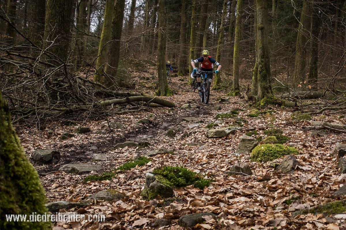 Technische Steinsektionen auf den Trails rund um Weiskirchen