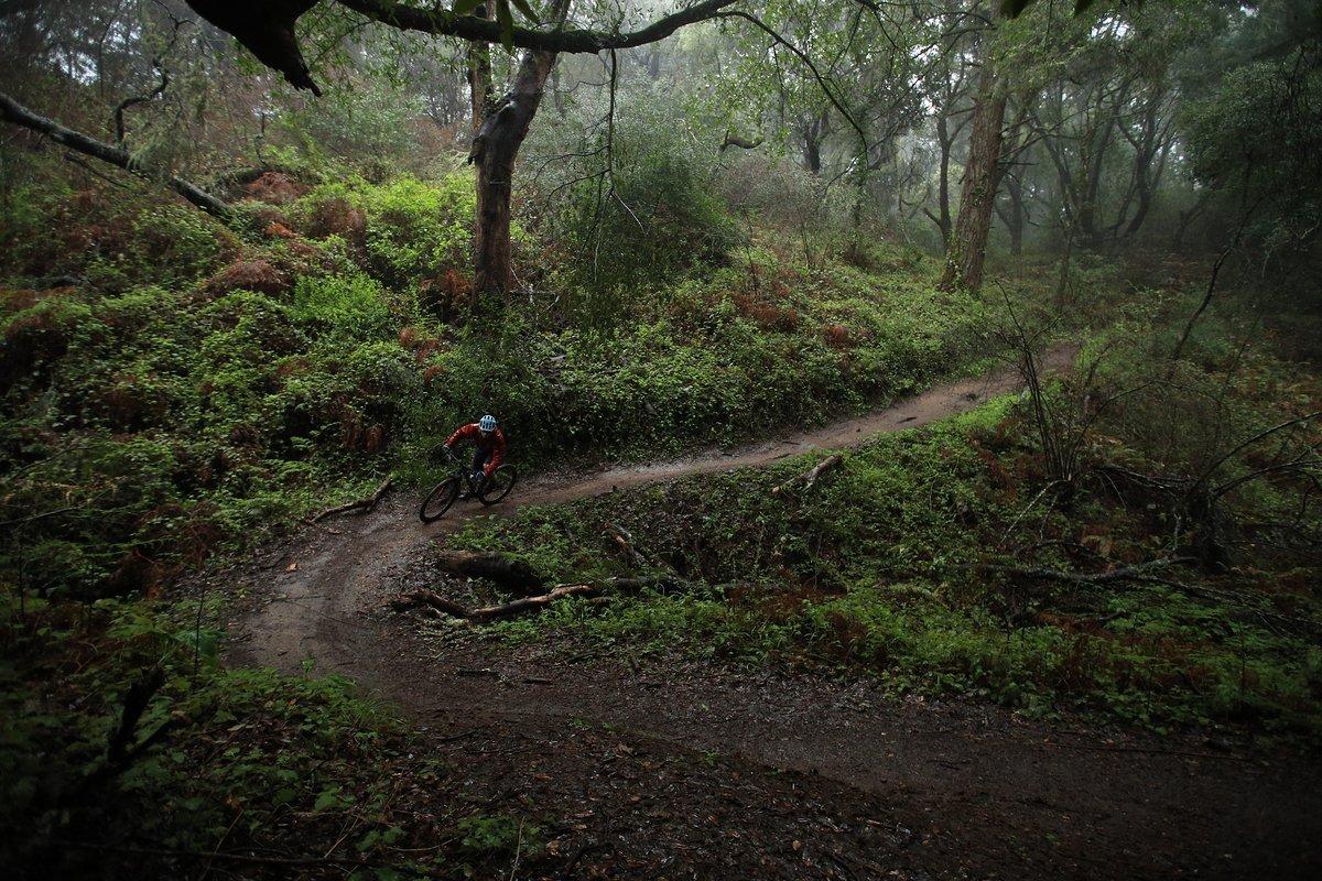Auf den flowigen Trails rund um Santa Cruz präsentierte sich das Highball als tapferer Begleiter