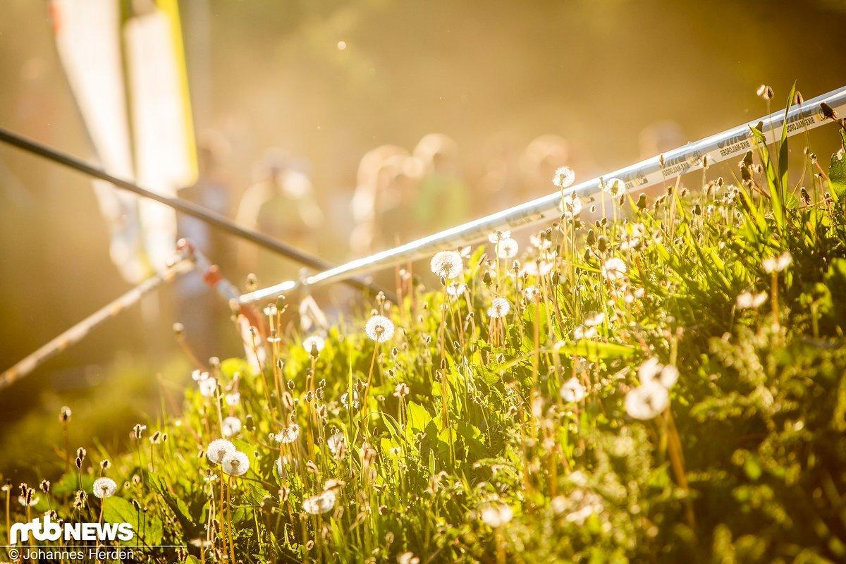 Wunderschöne Stimmung am Fourcross