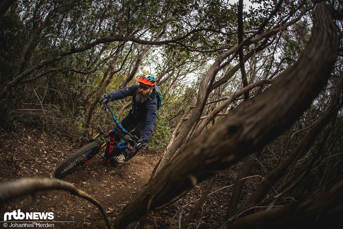 Die Trails rund um Punta Ala bestehen schon viele, viele Jahre – es wurde einiges an Holz hinaustransportiert und die Maultiere haben die Wege stark verdichtet