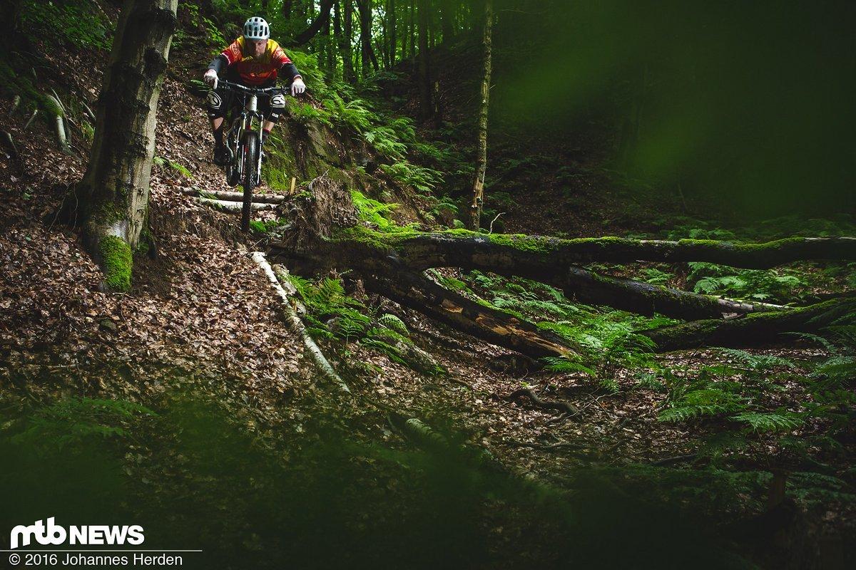 Basti spielt im Wald