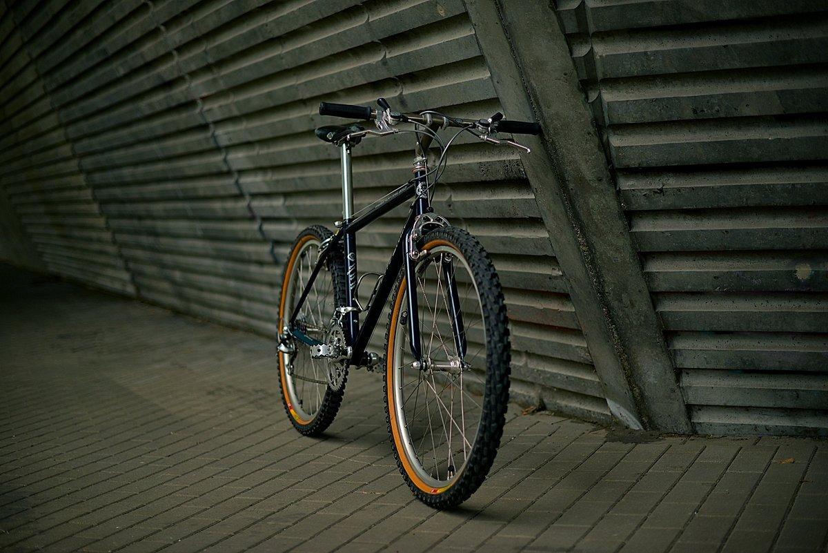 Das Wilderness Trail Bikes Phoenix von IBC-User wtb_rider