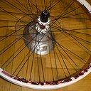 Wheels_DtSwiss_EX1750_Rear.jpg