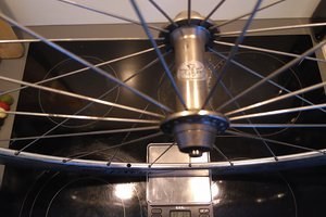 Bees - Campagnolo Atlanta 1996 - DT Competition