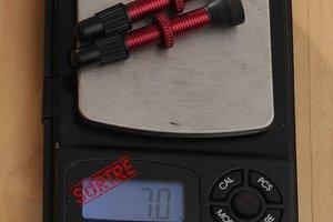 Tubeless Ventile SV RP-44502