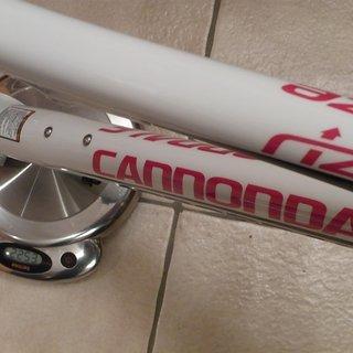 Gewicht Cannondale Full-Suspension Rize Carbon L