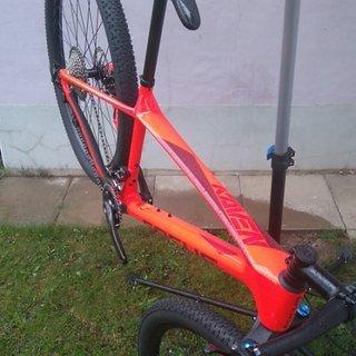 Gewicht Focus Bikes Hardtail Raven Evo, hotchili red M (46cm)