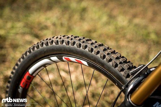 Während Greg Minnaar Maxxis Minion DHR II-Reifen montiert hat, greift Luca Shaw zum Signature-Modell von Greg Minnaar