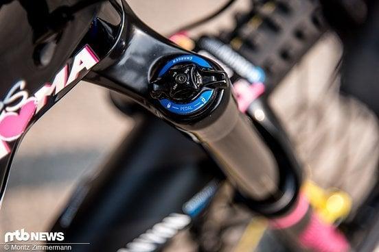 bike-check-ines-thoma-canyon-strive-cf-7769