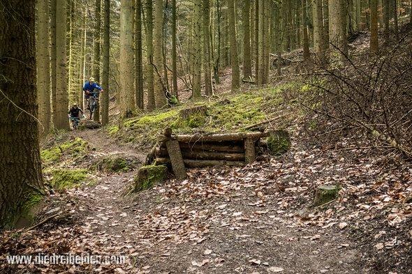 Trailpark Mehring Flowline