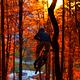 Ein dezentes Herbstlicht.