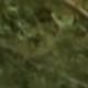 Bildschirmfoto 2018-09-21 um 13.49
