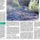 Massive Waldzerstörung