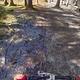 vlcsnap-2013-03-17-19h58m56s138
