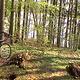 vlcsnap-2013-05-03-18h30m10s174